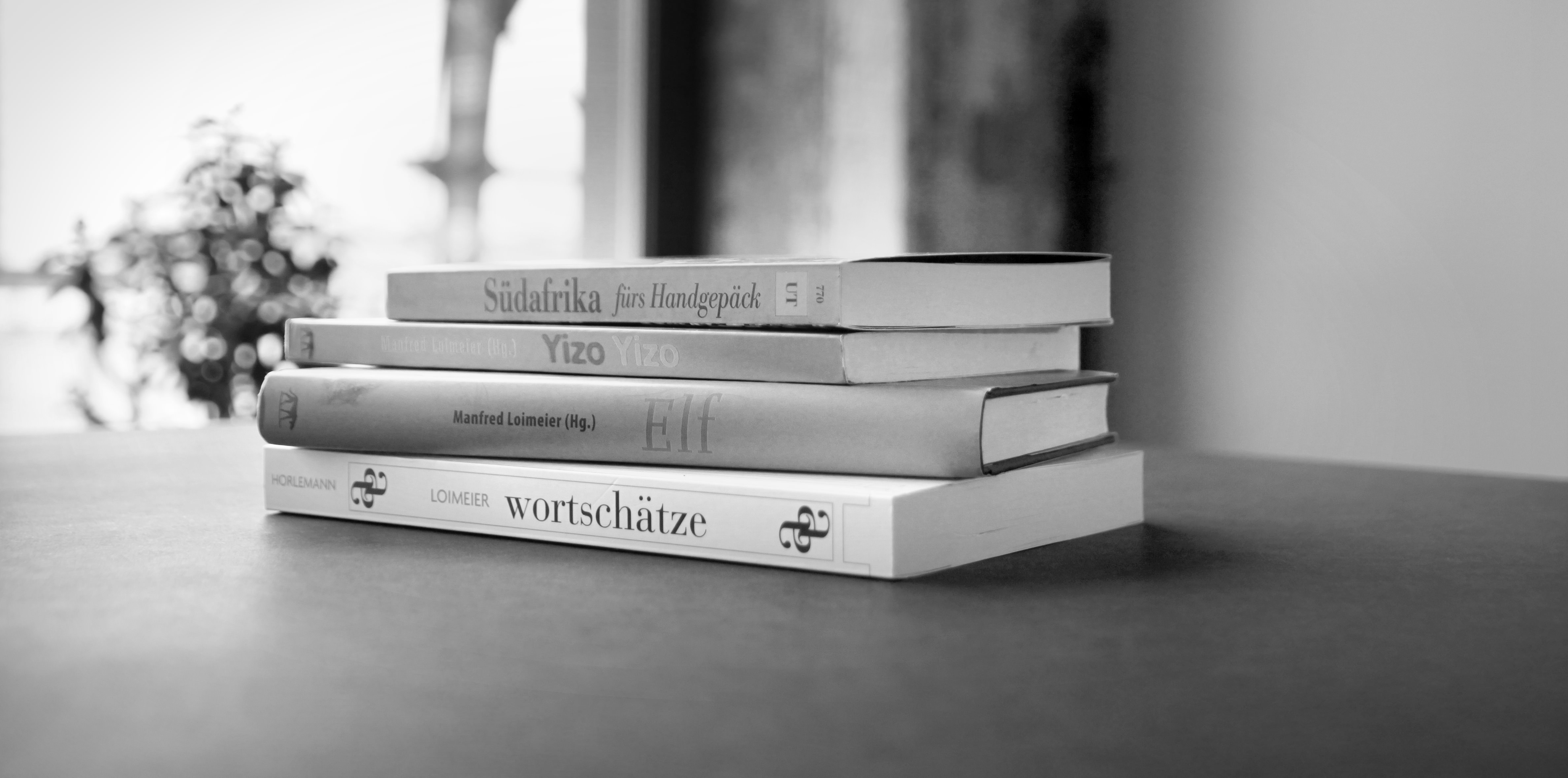 Vorträge & Moderationen – Manfred Loimeier